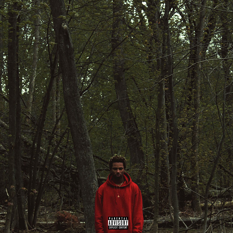 Night Lovell has finally released Red Teenage Melody