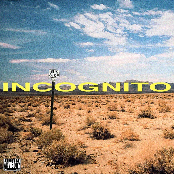 Reid Curry and Mali of Ottawa duo 5yrslate release Incognito