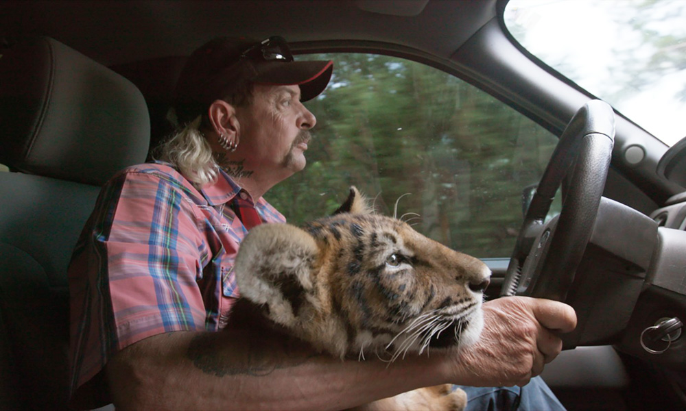 Merkules releases Tiger King-inspired video Carole Killed Her Husband