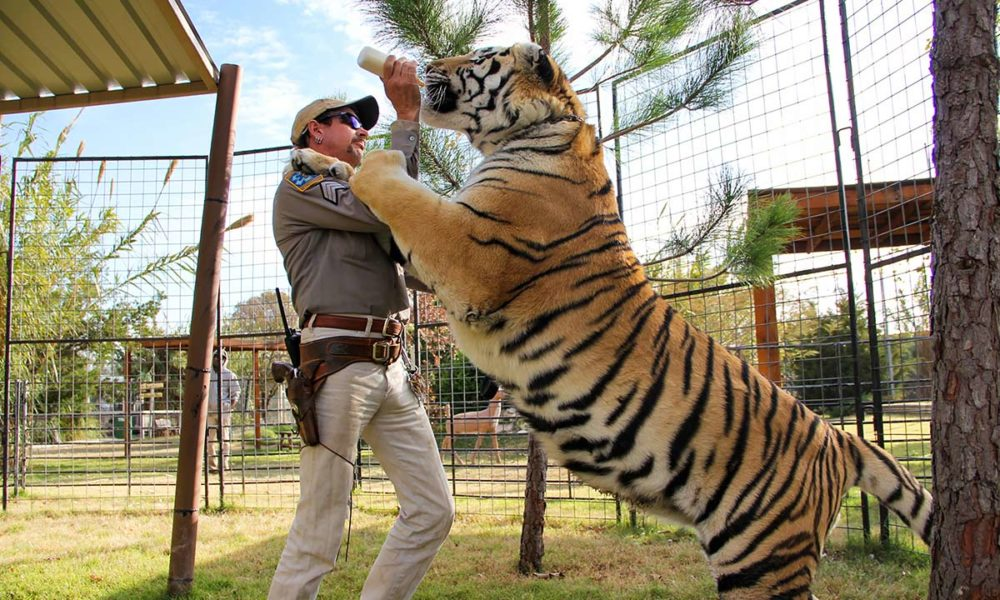 Scene from Tiger King (Netflix)