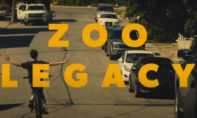 Scene from the Lost on Purpose video by Zoo Legacy
