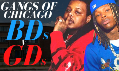 Trap Lore Ross on Gangs of Chicago: BDs vs GDs